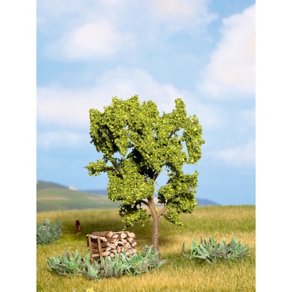 Birnbaum grün, 11,5 cm
